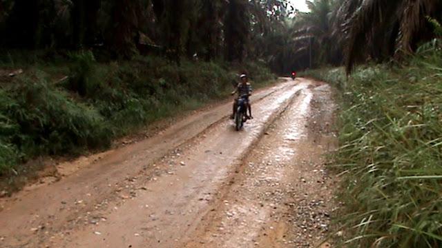 Kerusakan Jalan Kabupaten Ancam Lumpuhkan Aktifitas Masyarakat