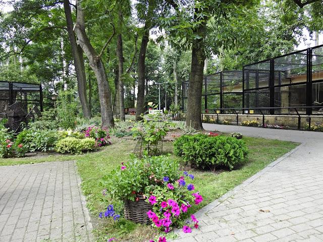 zoo w Nowym Tomyślu to 7 hektarów powierzchni i 48 gatunków zwierząt