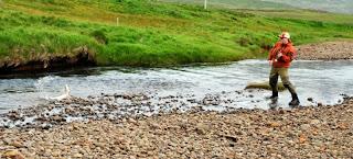 Pêcher en Islande