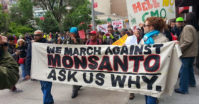 http://2.bp.blogspot.com/-S8BfFv1PJKo/U4GGti9_rnI/AAAAAAAAve8/FnU1MVnyIuI/s1600/March-against-Monsanto-690x360.jpg