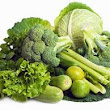 Green Vegetable Diet For Weight Loss