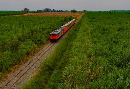 Travel Tren Ecuador conoce Durán – Yaguachi – Naranjito – Milagro en Tren