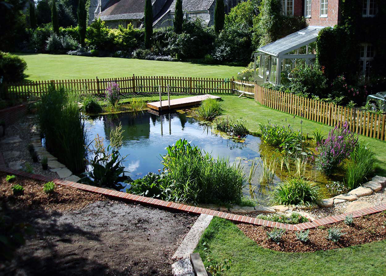 Landscaping Backyard With Eco Pool