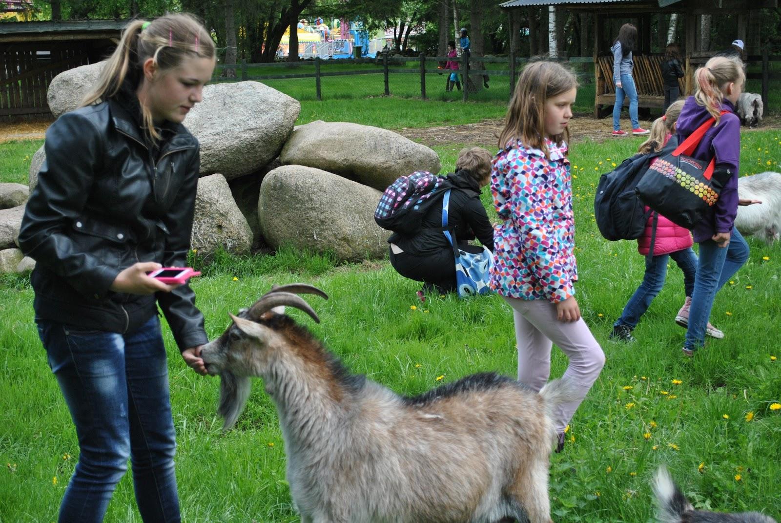 Denna sida uppdtaeras inte längre. Gunnesbo 4H-gård har en ny hemsida www.gunnesbo4h.se ...