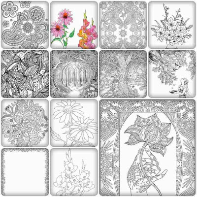 12 garden flowers printable coloring pages for adult