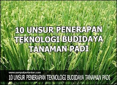 10 UNSUR PENERAPAN TEKNOLOGI BUDIDAYA TANAMAN PADI
