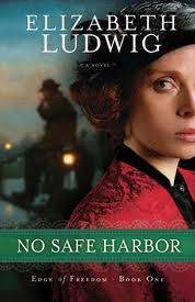 Review - No Safe Harbor