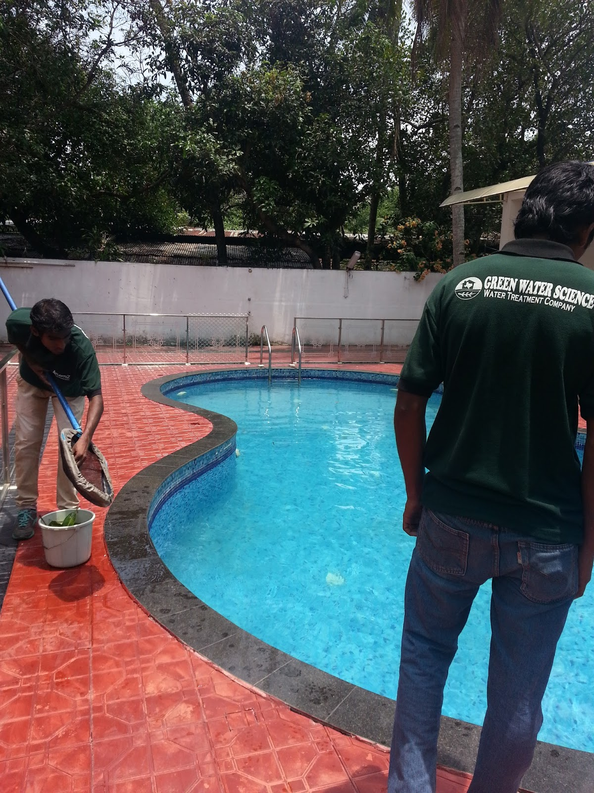 Planning To Build A Swimming Pool Within Your Budget