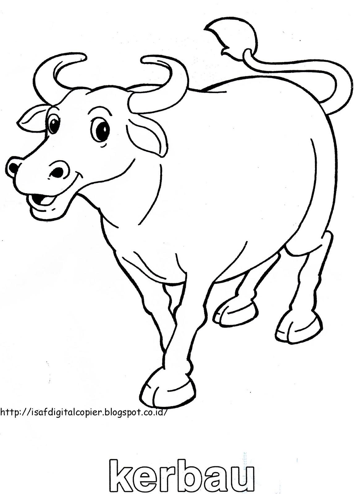 Blog Photo Copy Mewarnai Binatang