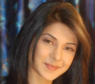 Hindi Drama Serial: jennifer winget as kumud in hindi serial
