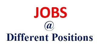 Letsupdate jobs