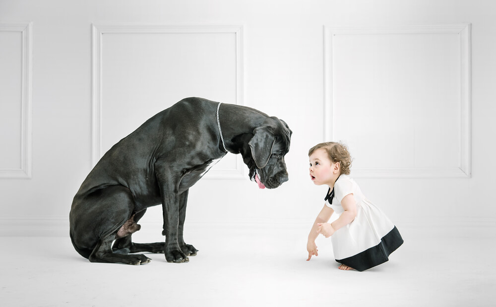 Child with Big Dog