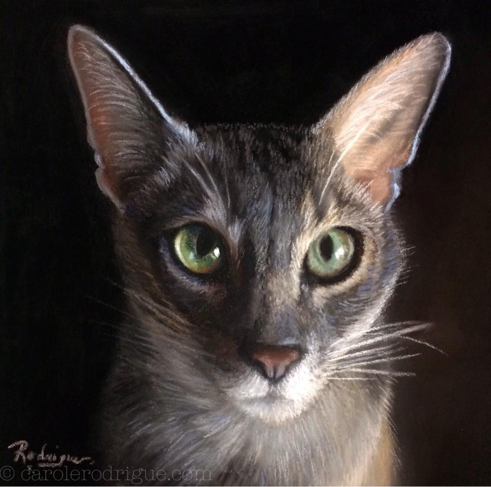 Oil Cat Portrait Commission Award Animal
