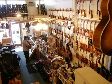 Do Guitar Stores Take Precautions When Buying Things Bed Bugs