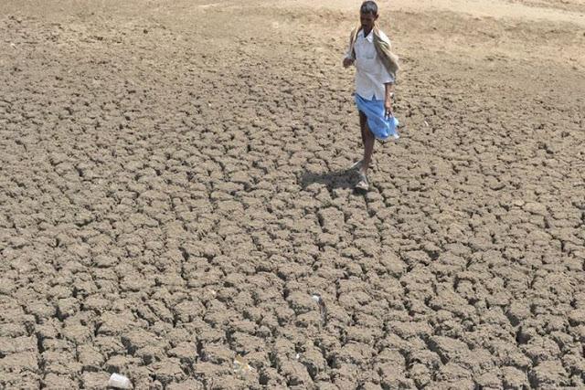 Tahun 2100, Suhu di Negara-negara Ini Akan Mematikan Manusia
