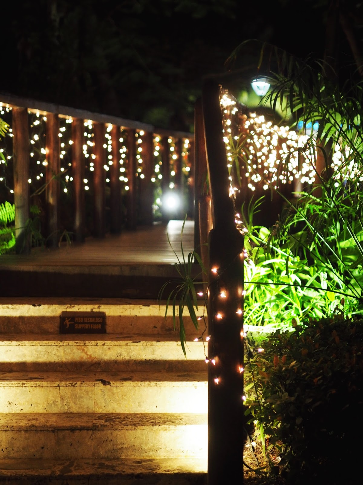 Fairy Light Covered Bridge with Palm trees and bushes over Pond