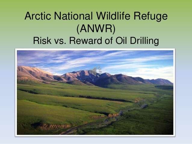 the arctic national wildlife reserve should not be drilled for oil Home civic opinion debate club is it time to drill in the arctic refuge  energy production through drilling in the arctic national wildlife refuge the united states has vast energy resources.