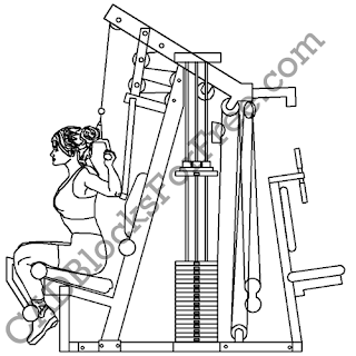 CADBlocksForFree.com: Download Gym Equipment CAD Blocks