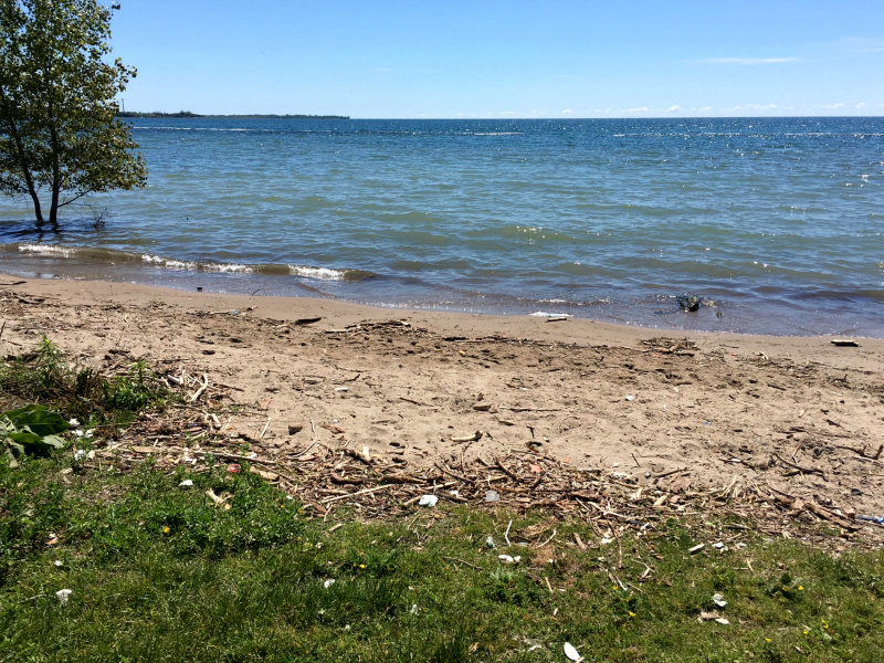 Lake Ontario Shoreline Cleanup with A Greener Future