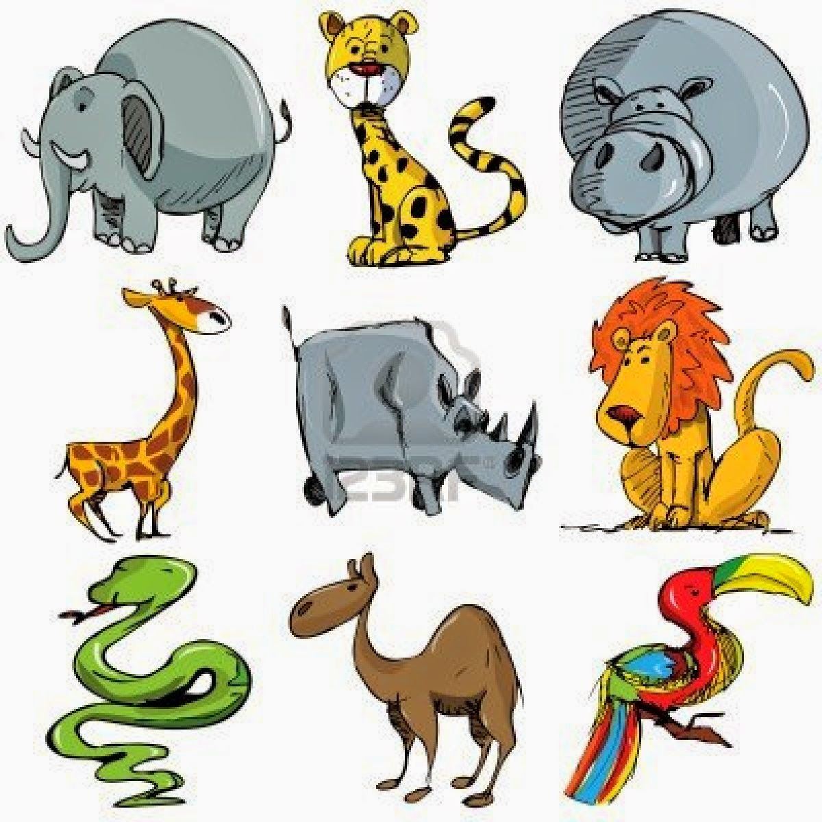 The Interactive English Classroom Comparing Animals