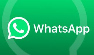Numero WhatsApp