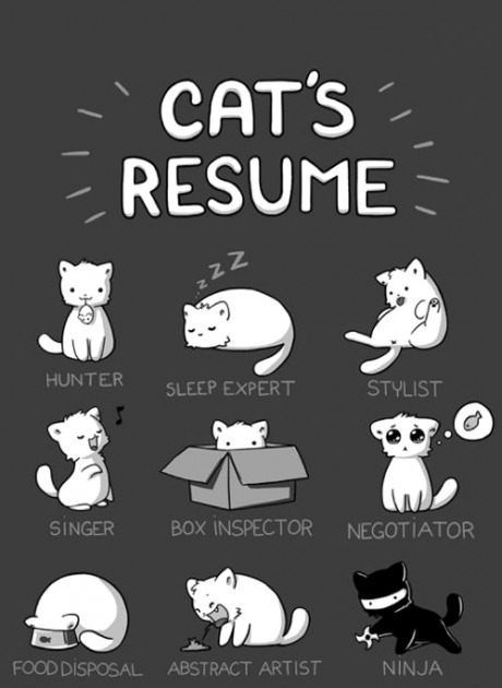 cv photo cartoon pinterest