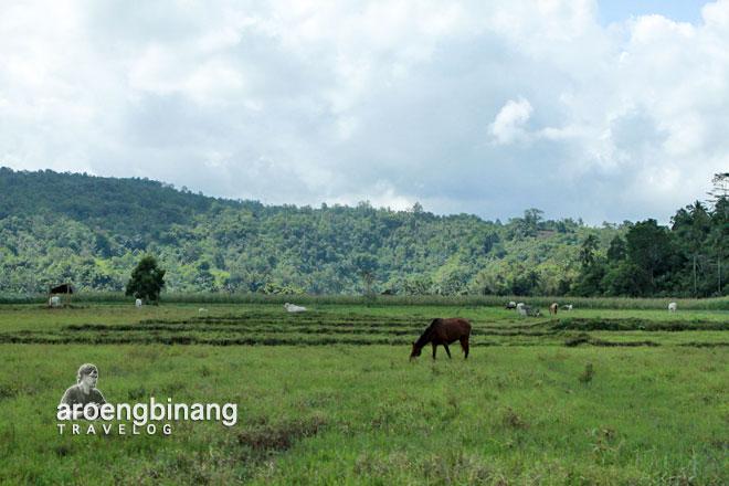 padang rumput watu pinawetengan minahasa sulawesi utara