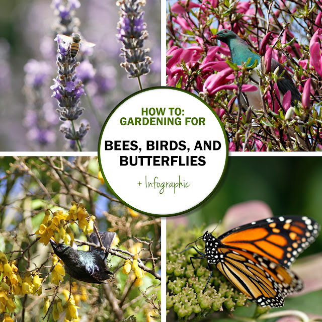 Green in Real Life Ideas for the Home Garden Bees