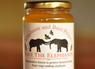 Πως φτάσαμε να έχουμε απούλητα τα μέλια μας στις αποθήκες