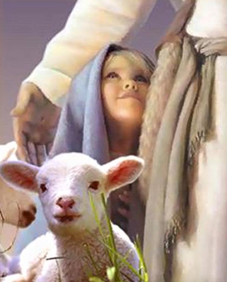 Image result for trú ẩn trong chúa Giêsu