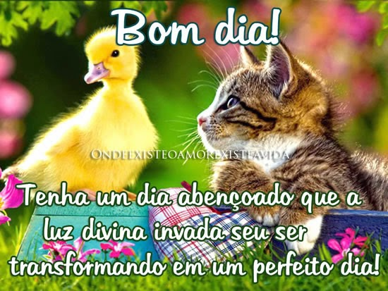 Imagem De Bom Dia Evangélica: Recados Pra Você : Bom Dia Para Todos Amigos Do Facebook