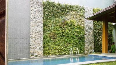 Tukang Taman Vertikal Surabaya | Vertical Garden