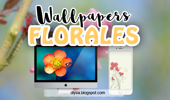 wallpaper, flores, flower, free, download, gratis, pc, iphone, android, celular