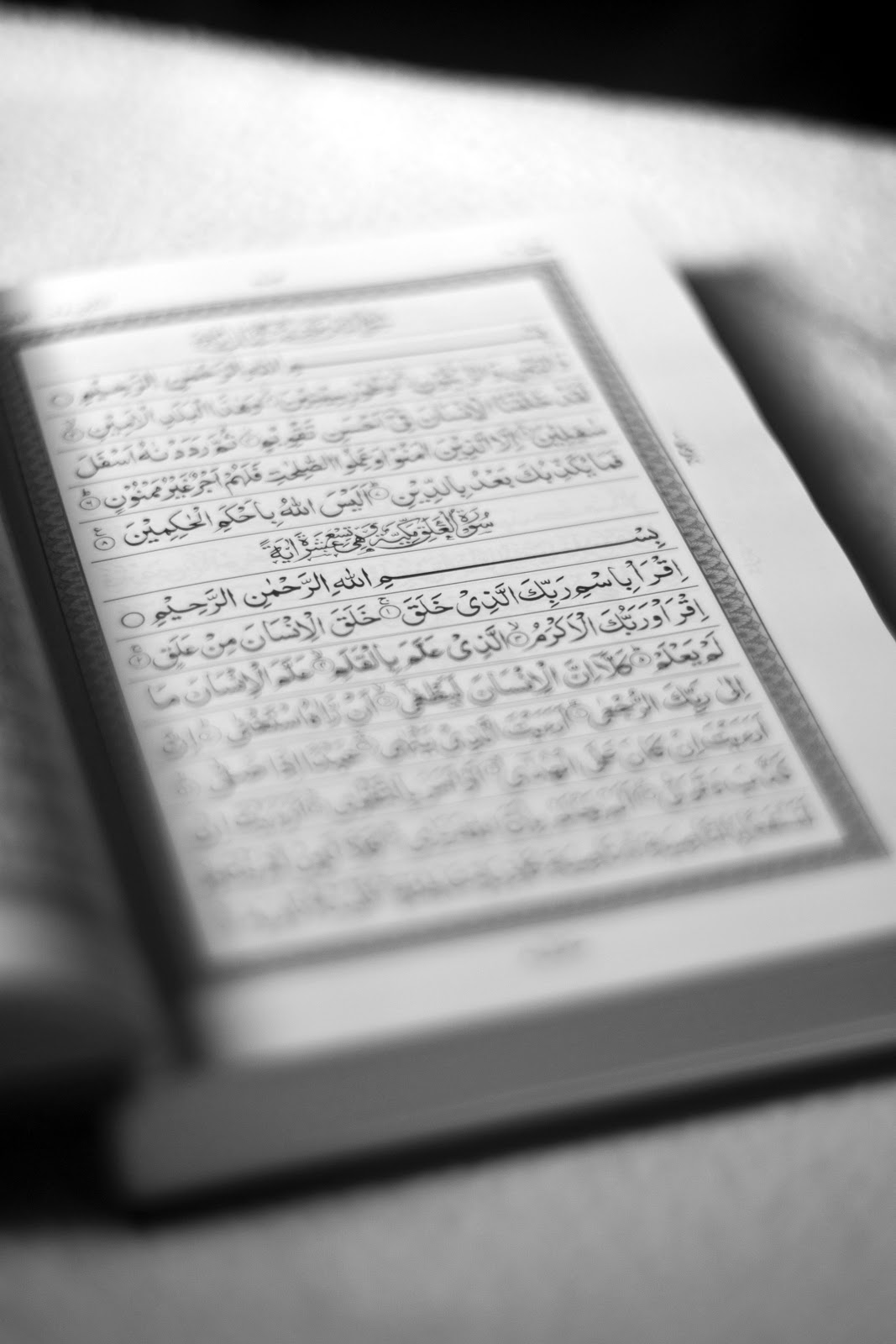 SCID Photography Journal: The Holy Al-Quran : Iqra'