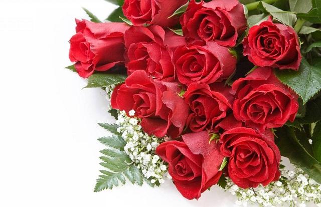 Bó hoa hồng đỏ đẹp nhất thế giới 18