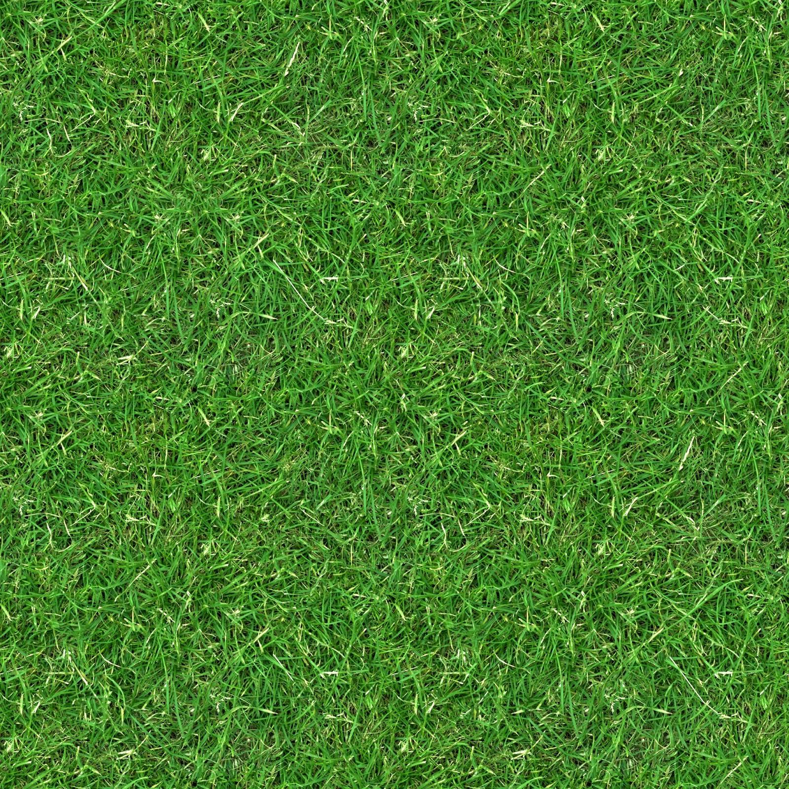 High Resolution Seamless Textures Grass 3 Seamless Turf