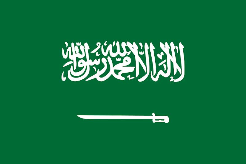 Logo Gambar Bendera Negara Arab Saudi PNG JPG ukuran 800 px