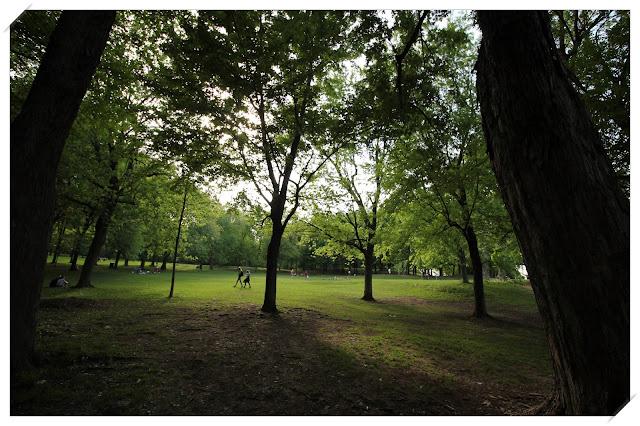 Parc Mont Royal Montréal