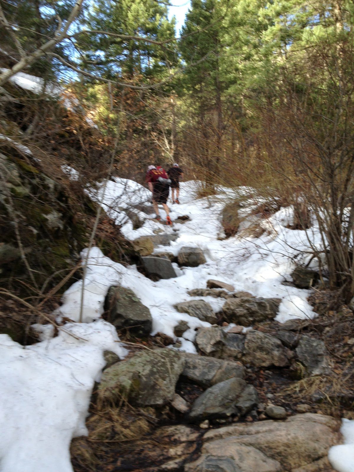 The Running Man: Waterton Canyon/Colorado Trail-Section 1 ...