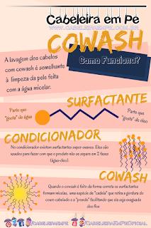 Como funciona a limpeza feita pelo cowash