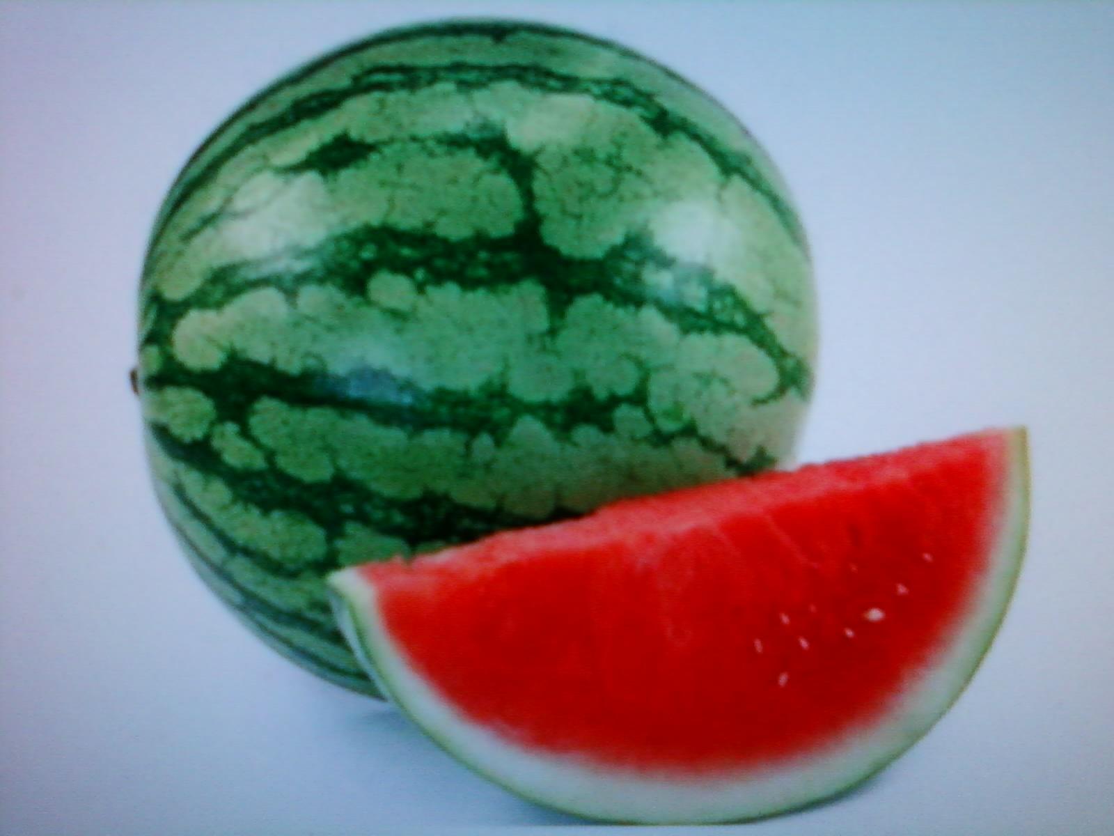 23 info terbaru gambar buah buahan buat mewarnai