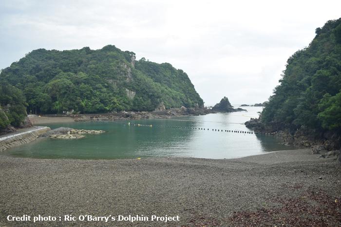 http://kemurioita.blogspot.com/2016/09/robs-dolphin-project-taiji-i.html