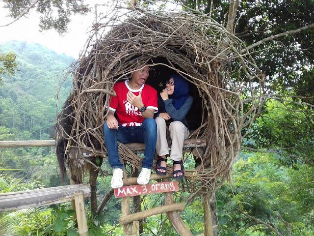 foto susuh burung puncak sendaren romantis