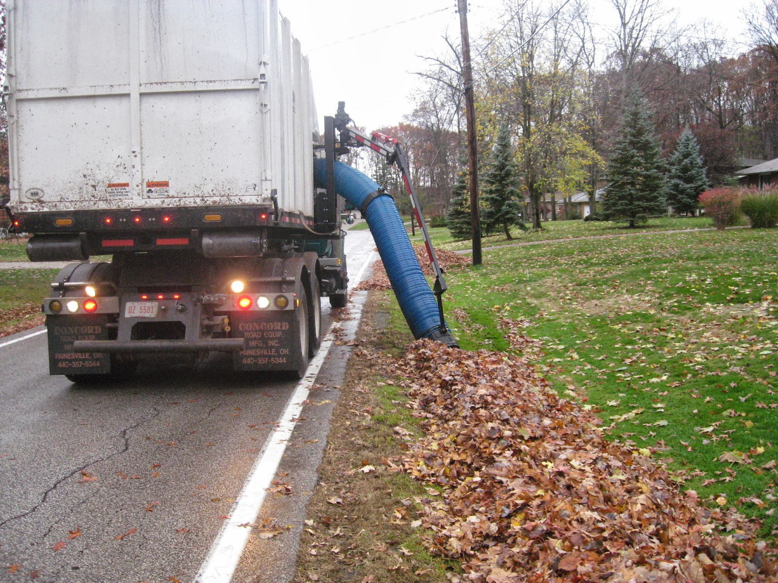 Removing Leaves Mulch