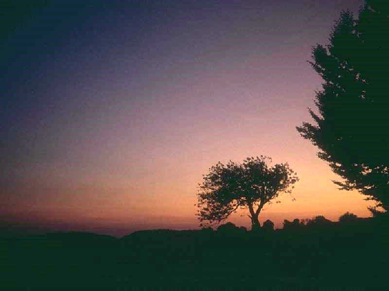 Download Gambar Wallpaper 3d Gambar Sunset Paling Indah