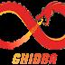 Ghidra - Software Reverse Engineering Framework