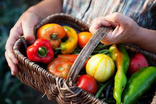 ájurvéda, íyurvéda, ájurvédikus táplálkozás, ájurvéda tancások őszre