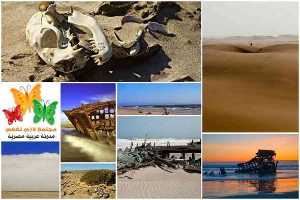 skeleton-coast-ساحل-الهيكل-العظمي