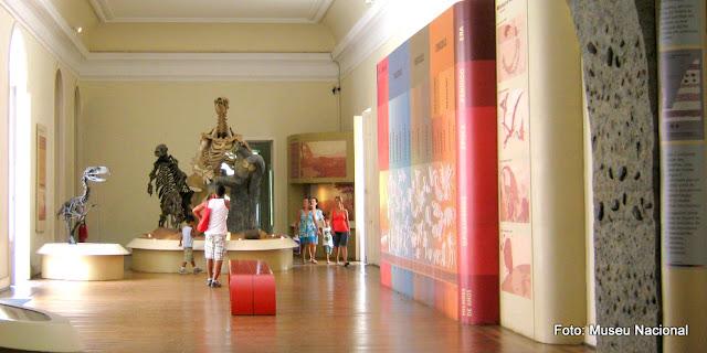 Coleção de fósseis do Museu Nacional da Quinta da Boa Vista