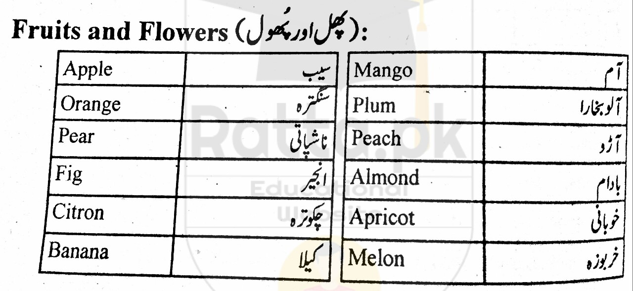 Fruits and Flowers English Words and Meanings in Urdu - English Vocabulary 1